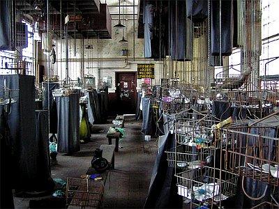 employee-building_bethlehem-steel-mills